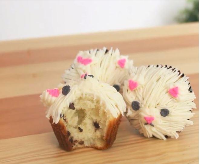 cupcakesgataki