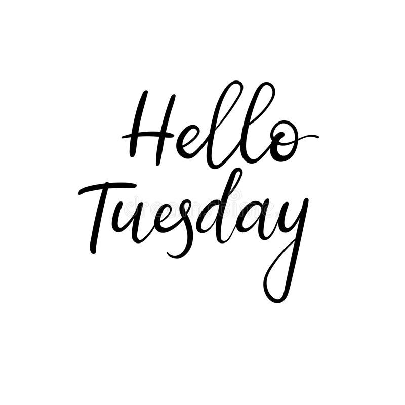 hello-tuesday-handwritten-modern-calligraphy-inscription-vector-brush-letters-style-white-background-90762038